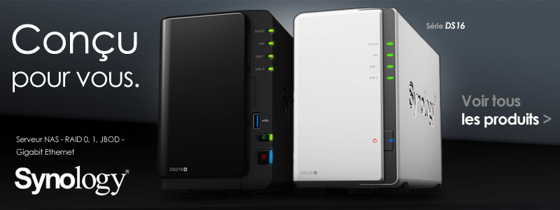 Synology DS216
