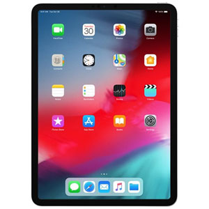 iPad Pro Wi-Fi + Cellular 11  - 1To / Argent