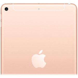 iPad Air Wi-Fi + Cellular - 10.5  / 64Go / Or