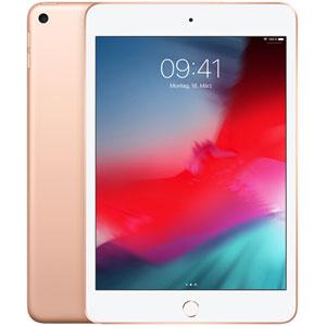 photo iPad Mini 5 Wi-Fi - 7.9  / 256Go / Or