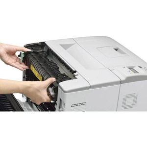 WorkForce AL-M300DN