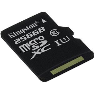 photo Canvas Select microSD UHS-I Class 10 - 256Go