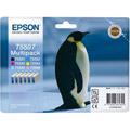 Photos Série Penguin - Multipack - T5597