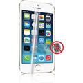 Photos Screen Protector AFG pour iPhone 5 (x2)