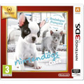 Photos Nintendogs + cats Bouledogue Français